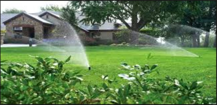 Blue Whales Sprinklers for Commercial Irrigation in Portland