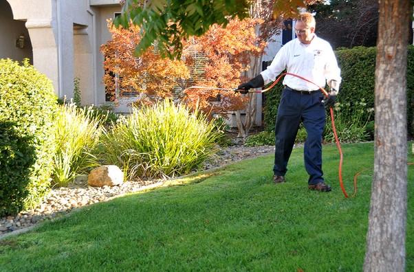 Sacramento CA Pest Control Company Specialized Pest Patrol