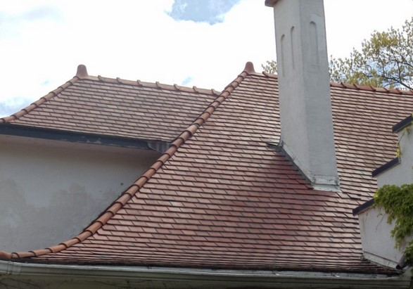 Roof Covering Materials Which Are Affordable Home