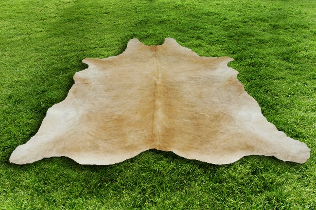 Cowhide Area rugs -- The numerous Various Colours Associated with Cowhide