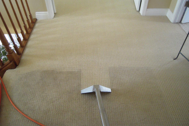 Do's as well as Don'ts Whenever Employing an expert Carpeting Solution