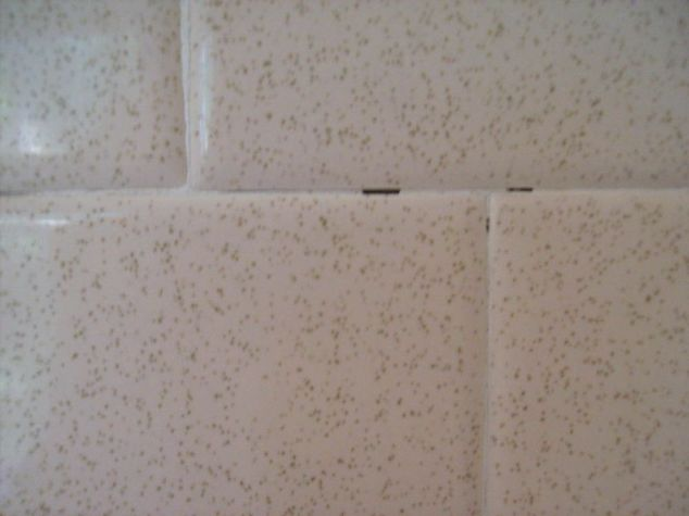 Helpful suggestions with regard to Tile as well as Grout Upkeep
