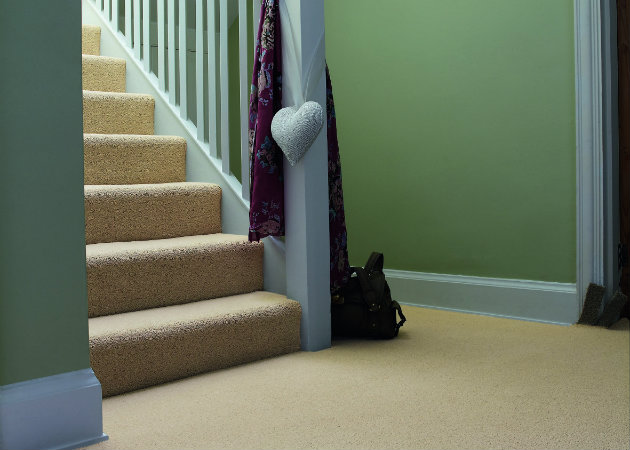 Ideas within Choosing the best Expert Carpeting Solution for you personally